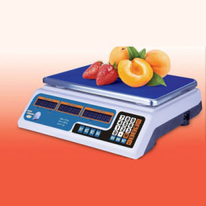 Digital Price Computing Weighing Apparatus (DH~209A)